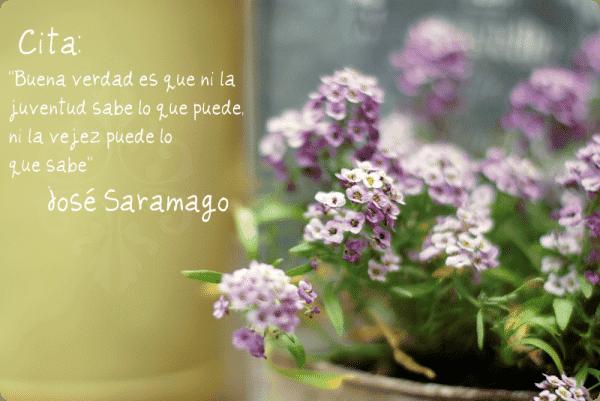 Saramago se ha ido
