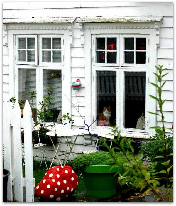 Casita de madera en Stavanger, con inquilino!!!