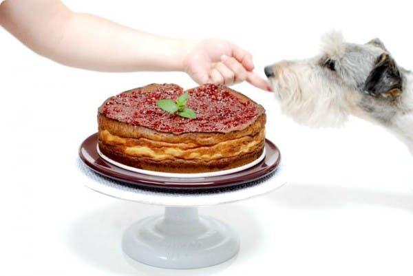 Esta es la tarta de Queso fresco de la 'Pepa'